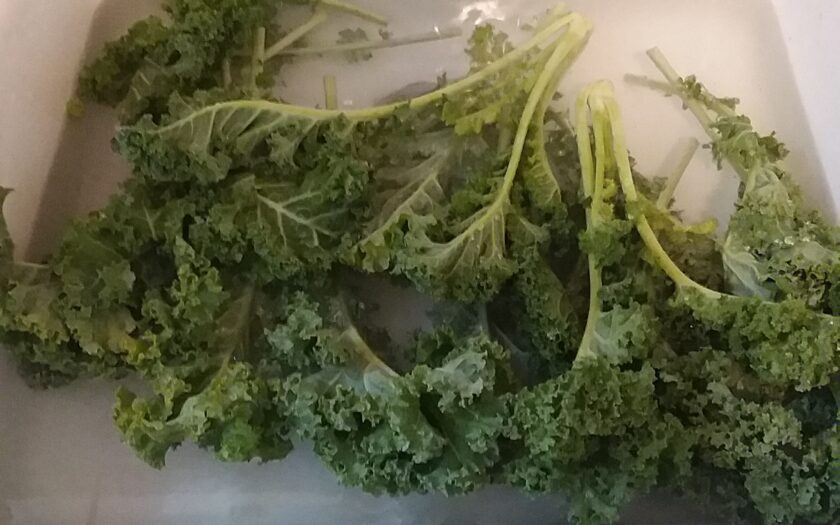 The Thrifty Housewife: Freeze Your Greens!
