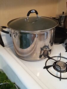 A pot of water on a stove, ready for step two of vegetable freezing.