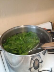 Immersing a strainer basket full of spinach into the boiling water.
