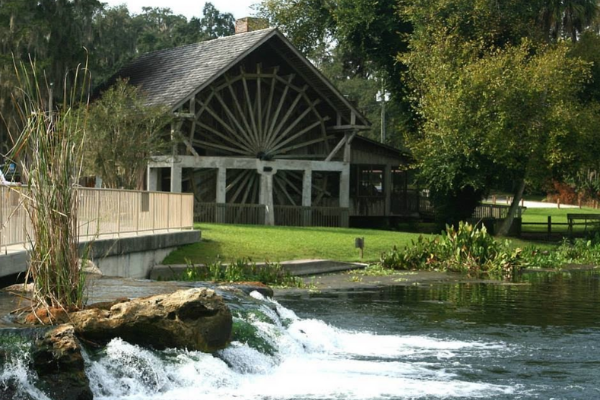 Have You Visited The Florida Springs?