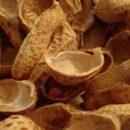 Alternative Packing Materials - Peanut Shells