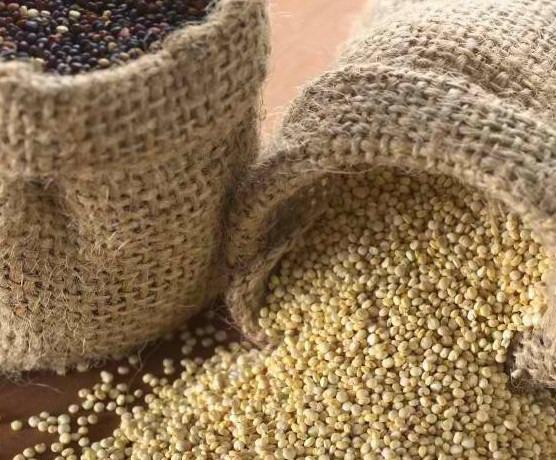 How to Ship Quinoa