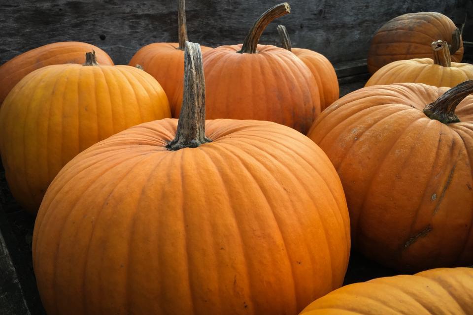 Ship Pumpkin