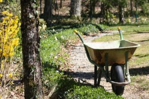 Shipping a wheelbarrow is not allowed in Nigeria