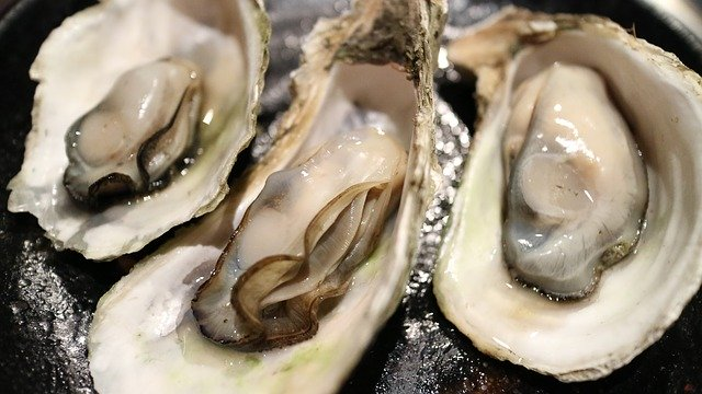 How to Ship Fresh Oysters