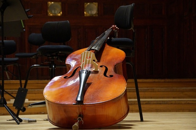 How to Ship a Double Bass