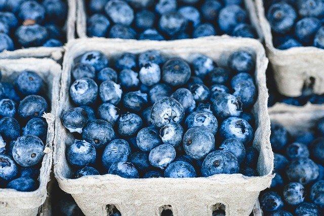 shipping fresh blueberries
