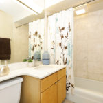 655 Irving Park #3205, Chicago, IL - Bathroom