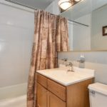 Lakeview - 655 West Irving Park Road Unit 5002, Chicago, IL 60613 - Bathroom