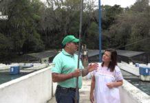 Criadero de trucha en el parque ecoturístico San Miguel