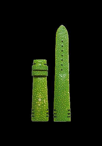irodori-green
