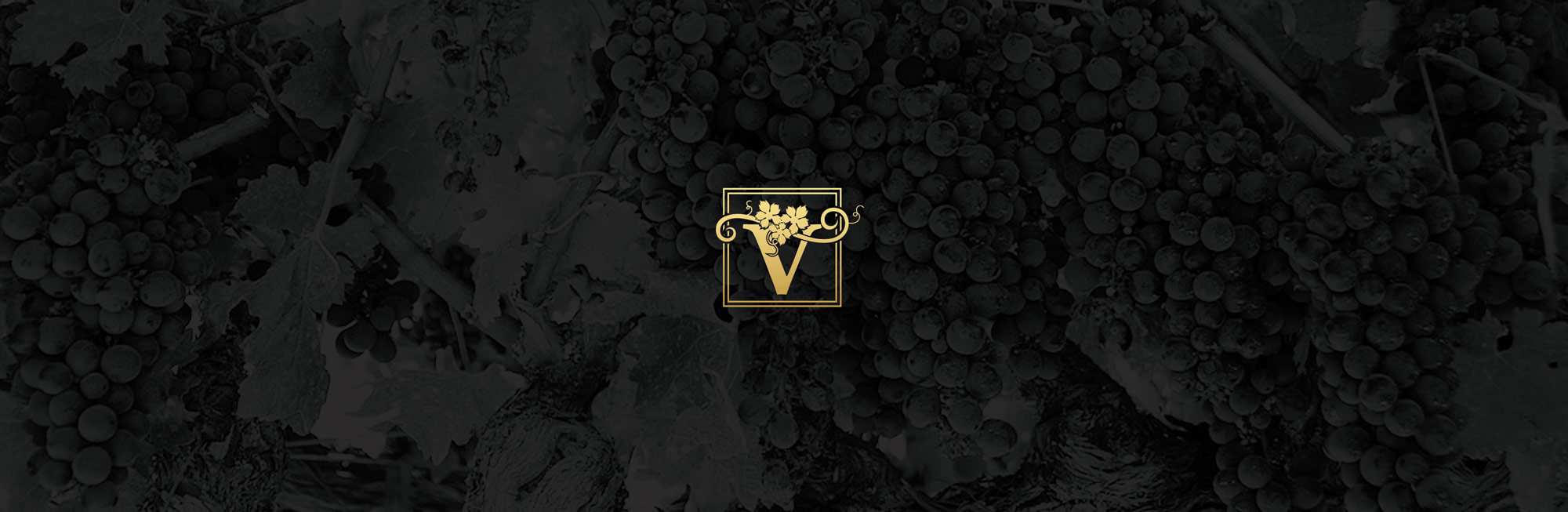 Vinosanto Vineyards Contact Page