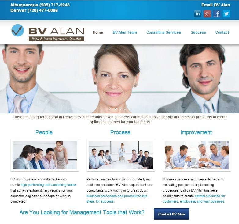 Organizational Consultant Website