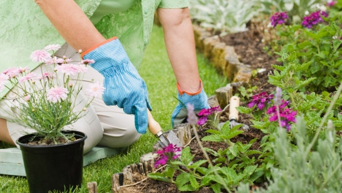 Cheap and Free Sources of Landscaping Materials photo