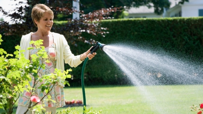 Don't Get Caught Doing These Things in Your Yard photo