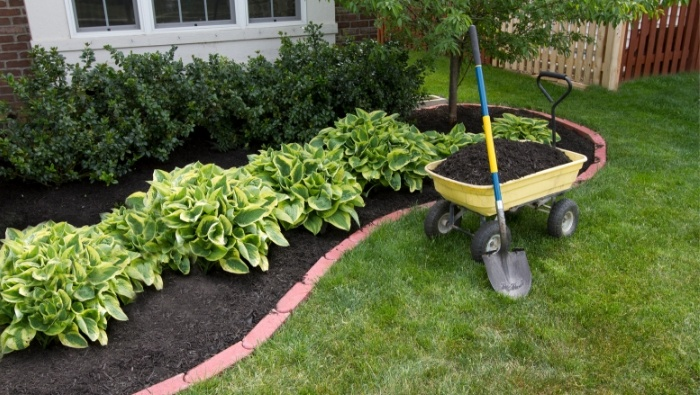 Inexpensive Landscaping Ideas for the Frugal Homeowner photo