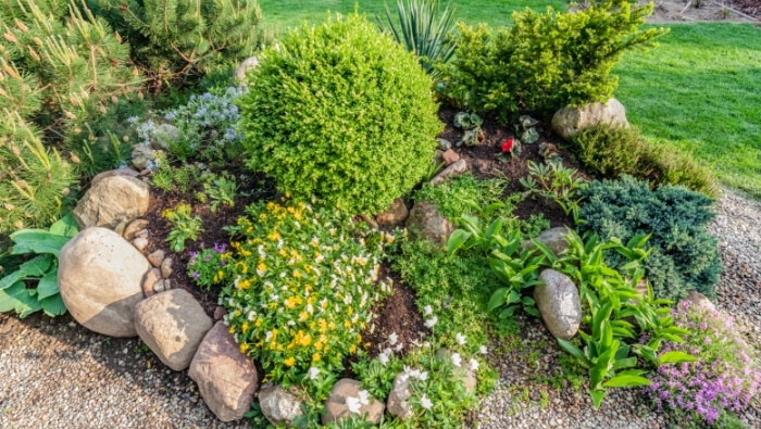 Affordable Alternatives to a Grass Lawn photo