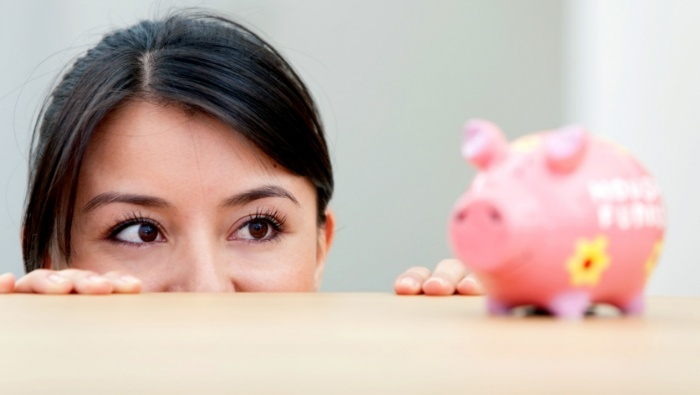 Basic Rules of Frugality photo