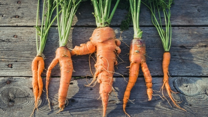 Join the Ugly Food Movement photo