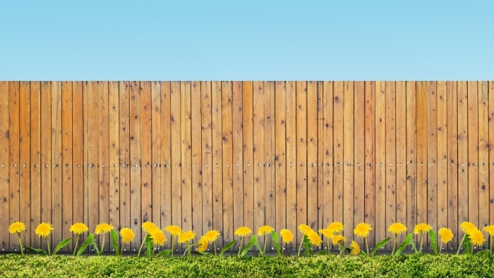 Do It Yourself Fences on the Cheap photo
