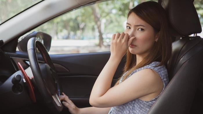 Removing Urine Odor from Car photo