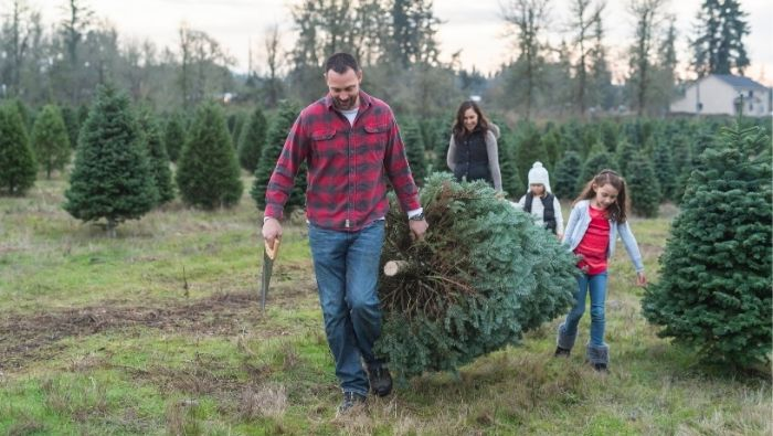 Inexpensive Old World Holiday Traditions photo