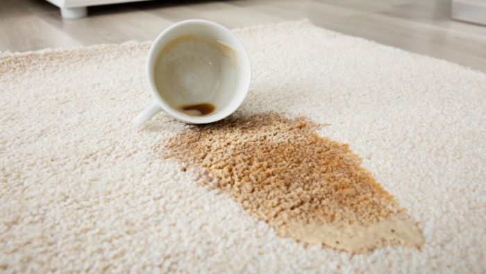 How Effective Are Dry Carpet Cleaners photo