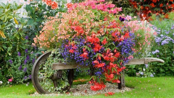 Create Dream Garden on $100 Per Year photo