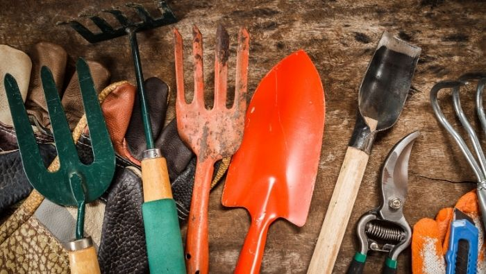 Inexpensive Tools for Beginner Gardeners photo