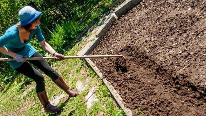 Raised Garden Beds on the Cheap photo