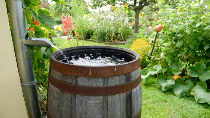Reduce Your Water Bill with Rain Barrels photo