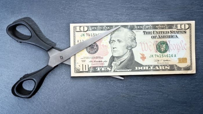 Ways to Cut Spending to the Bone photo