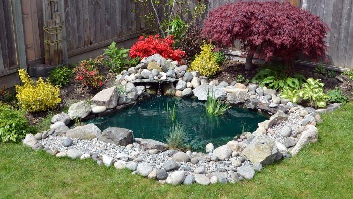 Affordable DIY Backyard Pond Ideas photo