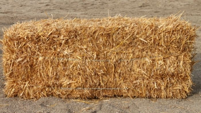 How to Set Up an Affordable Hay Bale Garden photo