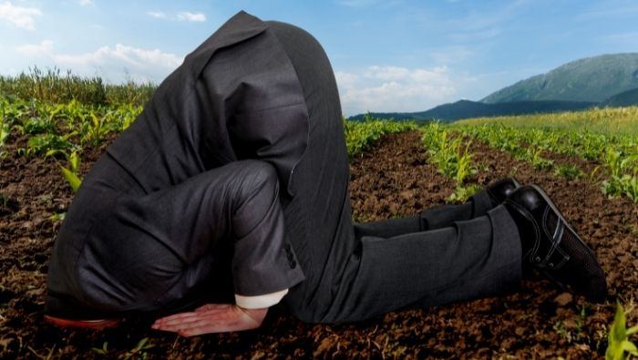 Don't Bury Your Head in Sand About Finances photo