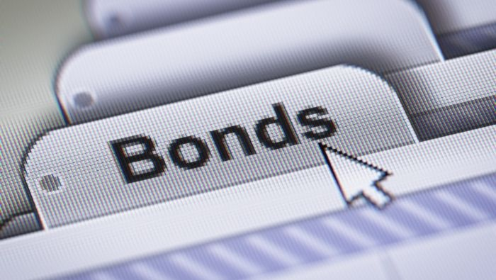 The Different Types of Bonds photo