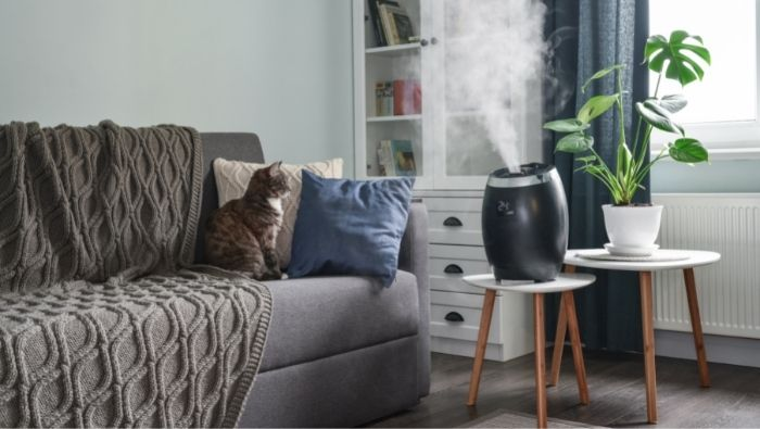 Vaporizers and Humidifiers photo