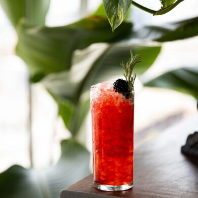 Non Alcoholic Blackberry Highball