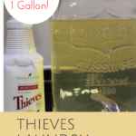 Thieves Laundry Soap Hack: 1 Bottle Turns Into 1 Gallon!