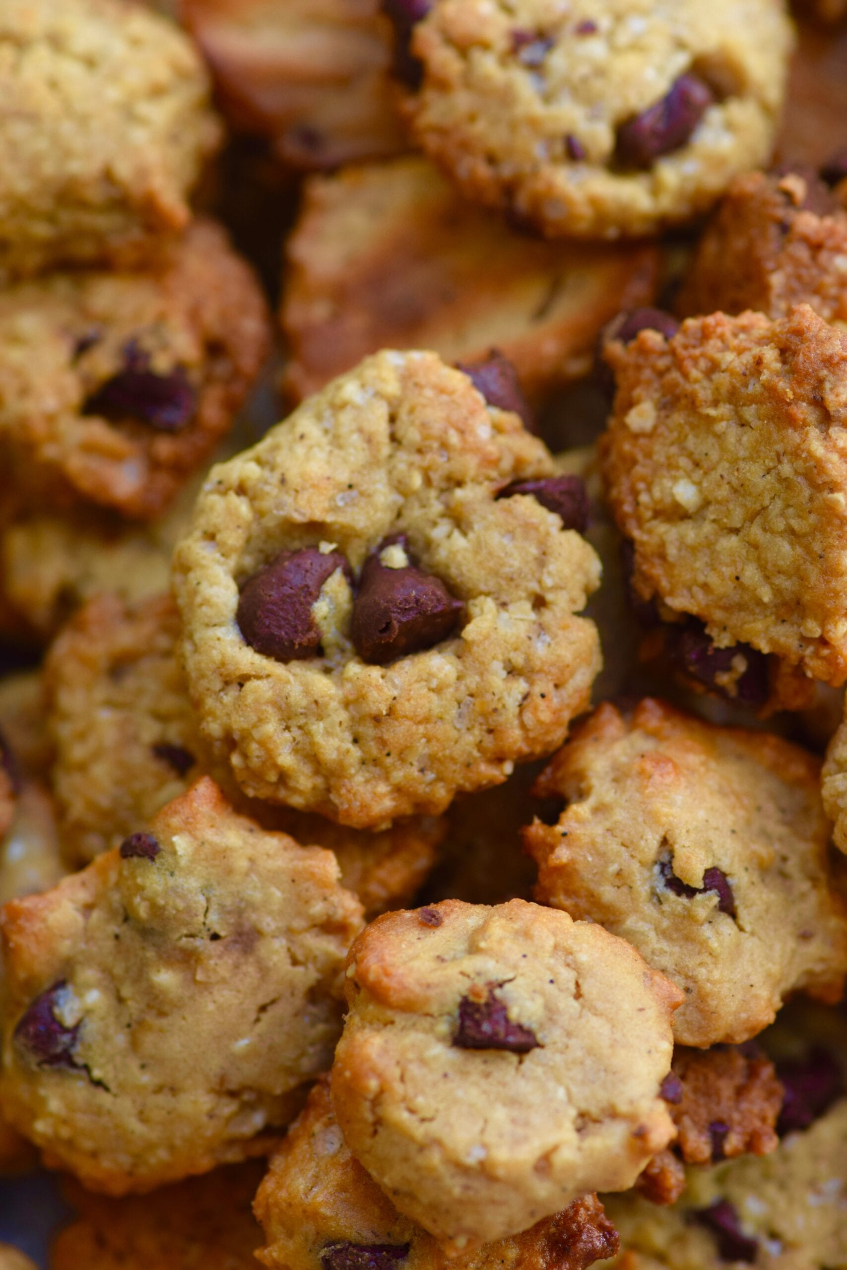 Healthy mini protein cookie cereal