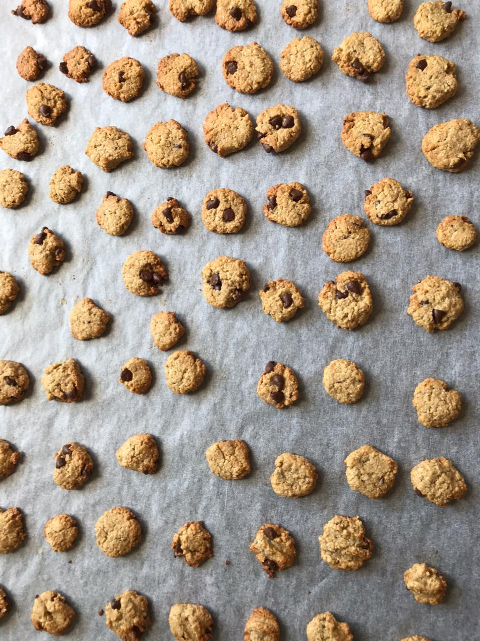 Mini cookie cereal straight out oven on baking tray