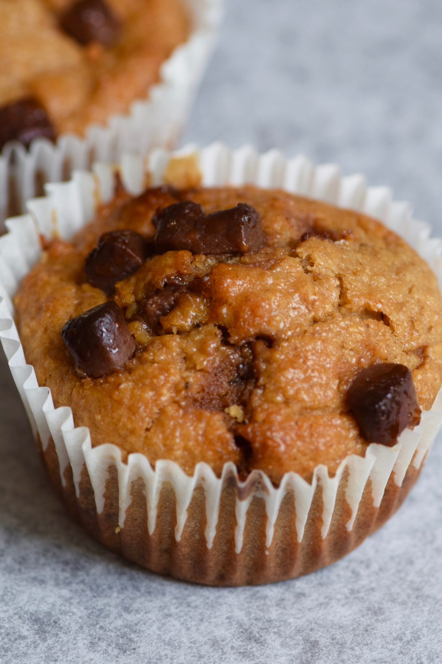 Chocolate chip healthy oatmeal breakfast muffins