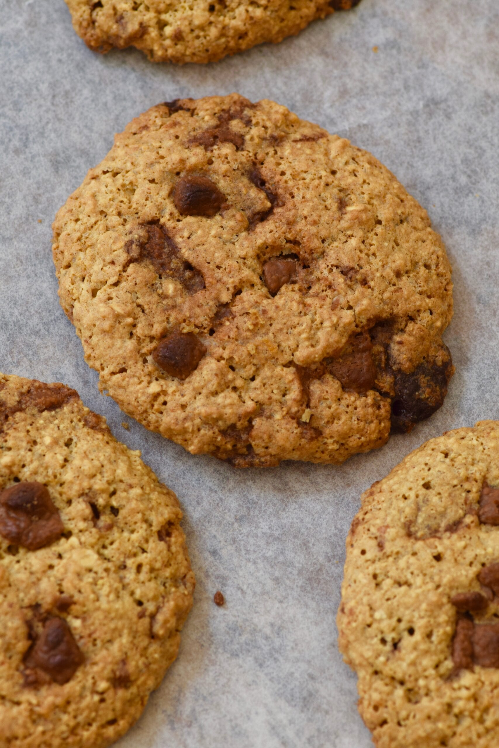 The best chocolate chip cookies fresh out the oven