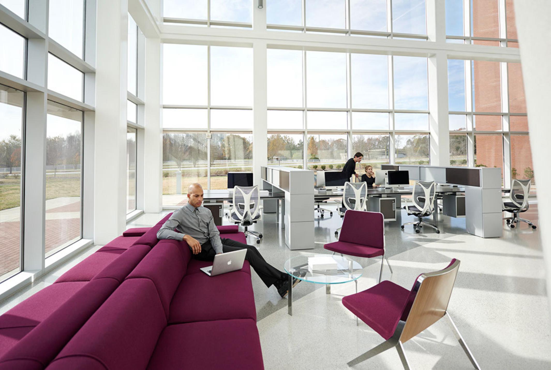 WO_Dude-Purple Sofa