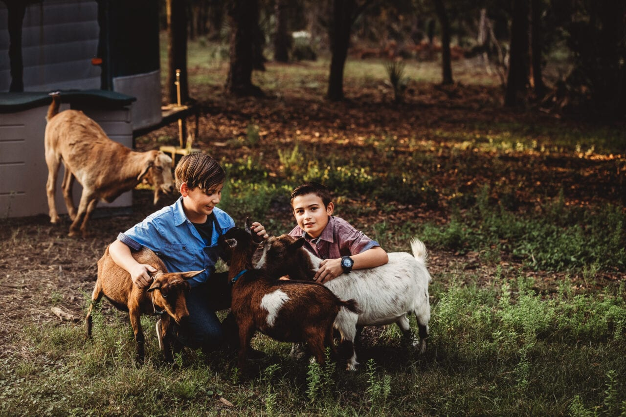 boys with goat on central florida farm
