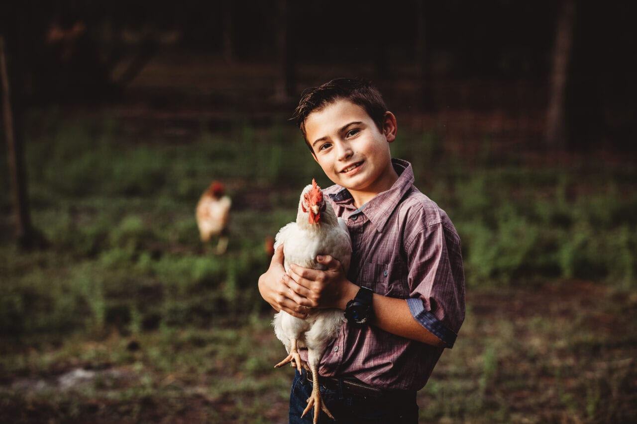boy with chicken on farm