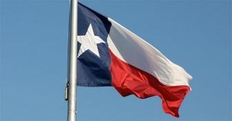 TX Flag Blowing