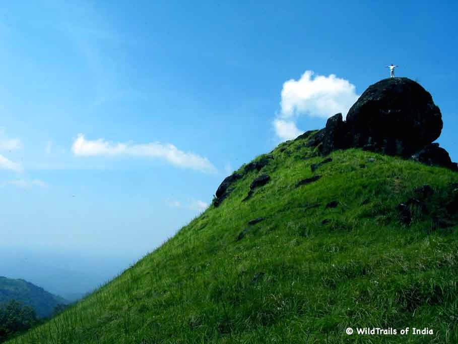"""Ranipuram Wildlife Sanctuary. WildTrails of India - """"One Stop Destination for all Indian Wildlife Enthusiasts"""""""