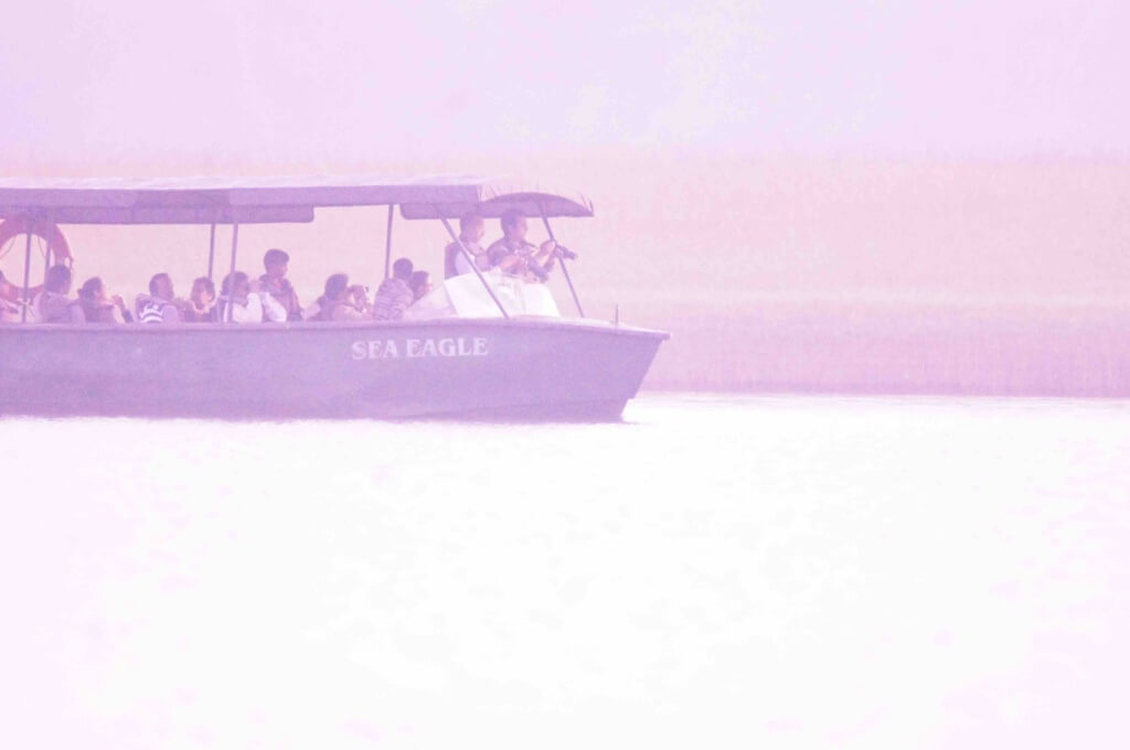 Boat Safari at Bhadra Tiger Reservce