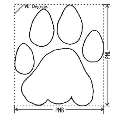 Tiger Pugmark WildTrails